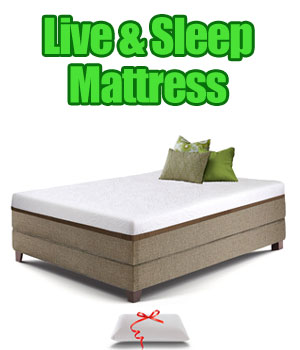 Live Sleep Resort Memory Foam Mattress Under $500